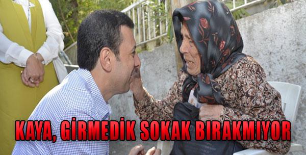 AK Partili Kaya, Çalışmalarını Sürdürüyor