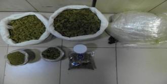 5 Ayrı Uyuşturucu Operasyonuna 7 Tutuklama