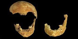 Sekiz Bin Yıl Sonra  Çıkarıldılar