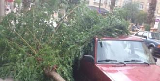 Turgutlu'da Şiddetli Rüzgar Hayatı Olumsuz Etkiliyor