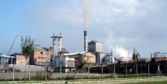 Şeker Fabrikasının Taşınması Yargıda