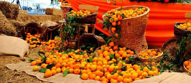 Seferihisar'da C Vitaminli Şenlik