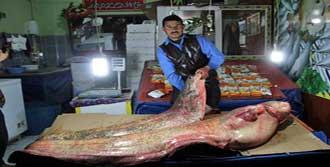 Gölde 100 Kiloluk Dev Balık