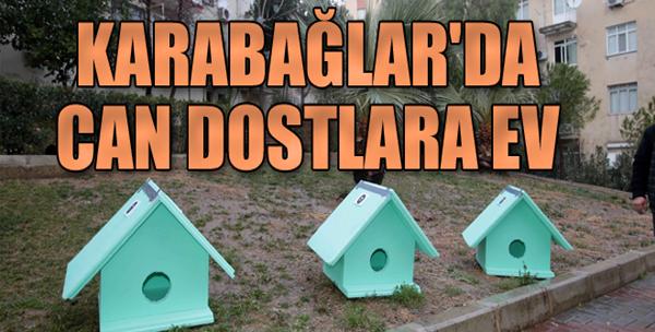 Karabağlar'da Can Dostların da Evi Var