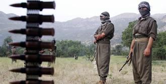 PKK'lılar Yol Kesip Korucu Yaraladı