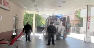 Adana'da Mers Virüsü Alarmı