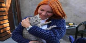 Mahsur Kalan Kediyi İtfaiye Kurtardı