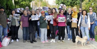 Antalya'da Kedi Ölümleri Protestosu