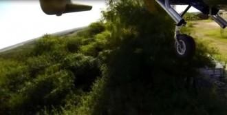 Arızalanan Uçak Ağacın Tepesine İndi