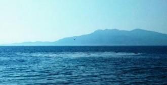 Denizde Ürküten Görüntü