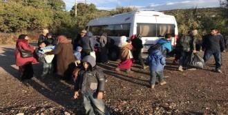 41 Suriyeli Yakalandı