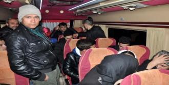 Ayvacık'ta 44 Mülteci Yakalandı