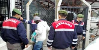 Mülteciler, 12 Farklı Ülkeden Çıktı