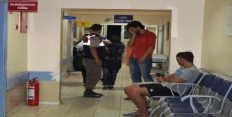 Ayvalık'ta 9 Kaçak Yakalandı