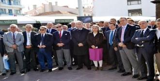 Ayvalık'ta Uluslararası Zeytin Hasat Günleri Başladı