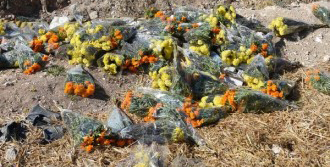 Piknikçiler Çöplerini Bırakıp Gidiyor