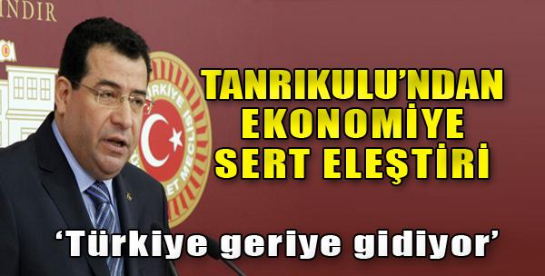 Tanrıkulu, Ekonomiyi Eleştirdi
