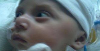 Nisa Bebek Yaşamak İçin İzin Bekliyor