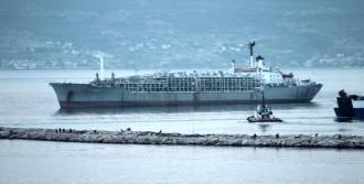 Bandırma Limanı Kokuyor