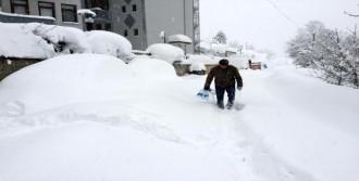 Bartın'da Kar Hayatı Felç Etti