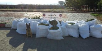 Bingöl'de  Uyuşturucu Ele Eçirildi