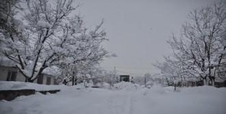Bitlis'te 149 Köy Yolu Ulaşıma Kapalı