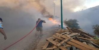 Bodrum'da Yangın Ormana Sıçradı