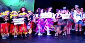 Bodrum Dans Festivali Düzenlendi