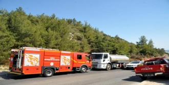 Bodrum'da Yol Kenarındaki Ağaçlar Yandı