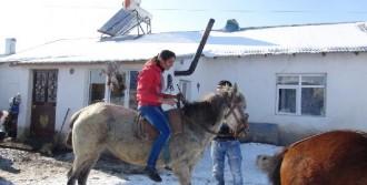 Bu Köyde Kadın Erkek Herkes At Biniyor