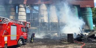 Bursa'da Palet Fabrikasında Yangın