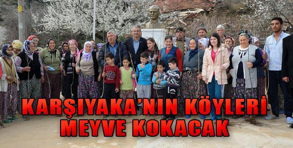 Karşıyaka'nın Köyleri Meyve Kokacak