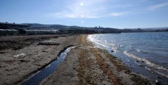 Çanakkale'de Deniz 3 Metre Çekildi