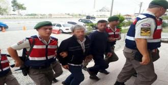 Çanakkale'de Hayvan Hırsızlığına 2 Tutuklama