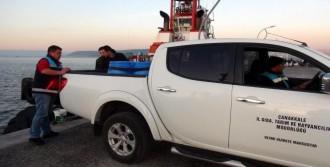 200 Kilo Deniz Patlıcanı Ele Geçirildi