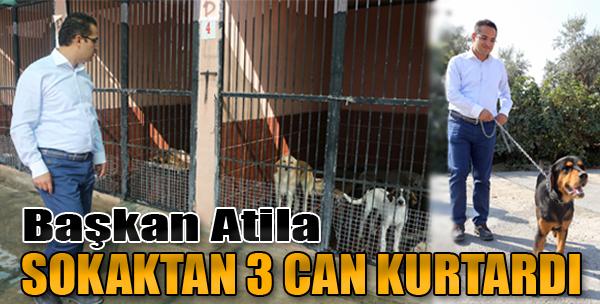 Başkan Atila Sokaktan 3 Can Kurtardı
