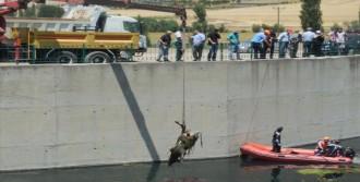 Ceyhan Nehri'nden 15 İnek Leşi Çıkarıldı