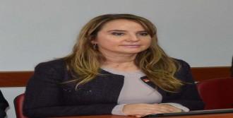 Rıdvan Dilmen Ve Bahçeli'ye Eleştiri
