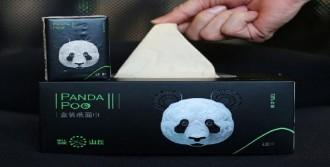 Panda Dışkısından Tuvalet Kağıdı