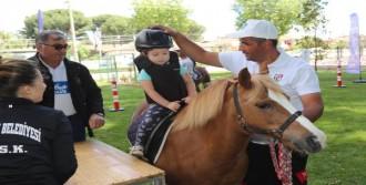 Çocuklar Bu Atları Çok Sevdi