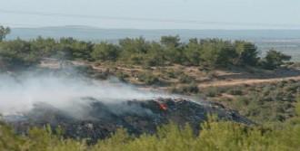 Çöplükte Çıkan Yangın Güçlükle Söndürüldü