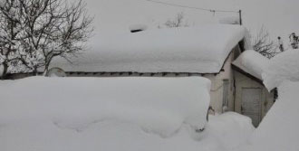 Bitlis'te 91 Köy Yolu Ulaşıma Kapalı