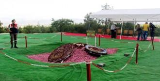 Demirel'in Anıt Mezarına Ziyaretler Sürüyor