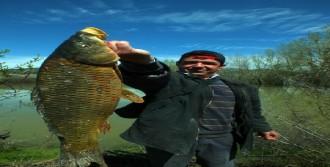 Devlet O Balığın Peşine Düştü