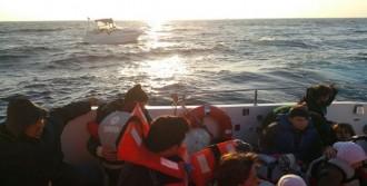 Didim'de 39 Kaçak Yakalandı