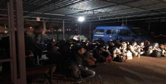 Didim'de 61 Kaçak Yakalandı