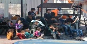 Dikili'de 176 Kaçak Yakalandı