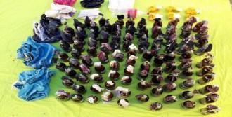 Diyarbakır'da 100 Molotof Ele Geçirildi