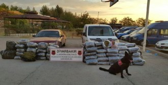Diyarbakır'da 345 Kilo Esrar Ele Geçirildi