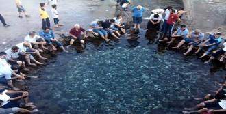 40 Derece Sıcakta Anzele'de Serinlik